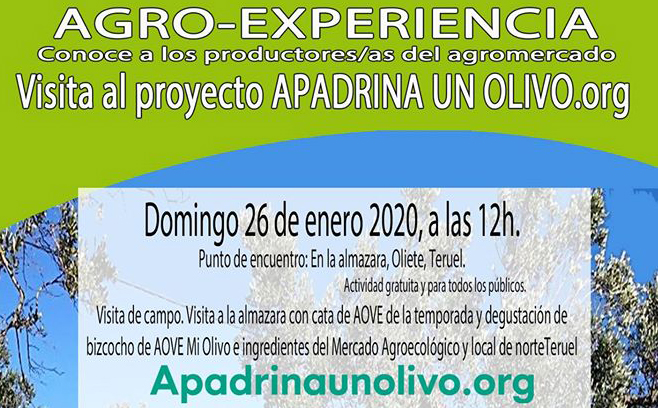 Agroexperiencia Apadrina un olivo