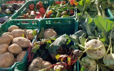 Así fue el Mercado agroecológico local y norte Teruel 15 de Octubre 2020