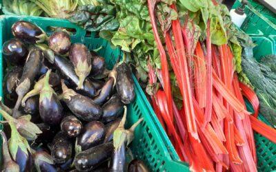 Mercado agroecológico local y norte Teruel 17 de diciembre 2020