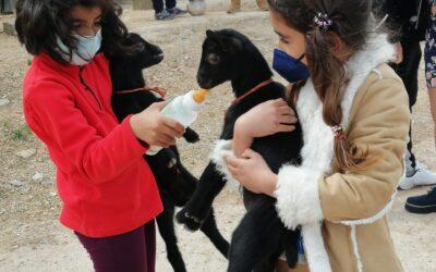 AgroExperiencia en Ejulve el sábado 27 de marzo