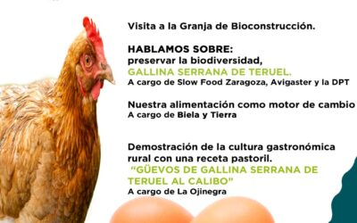 AgroExperiencia en Villel, el 28 de julio con Huevos La Brizna